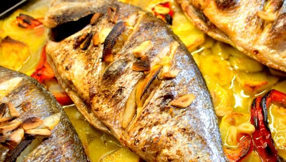 центре чем питается рыба дорадо мире